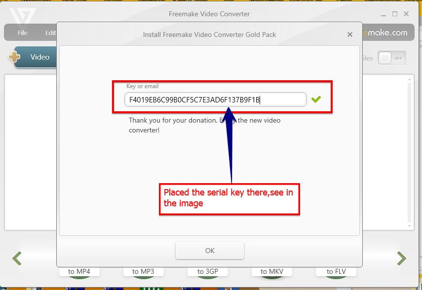 Freemake video converter serial key free