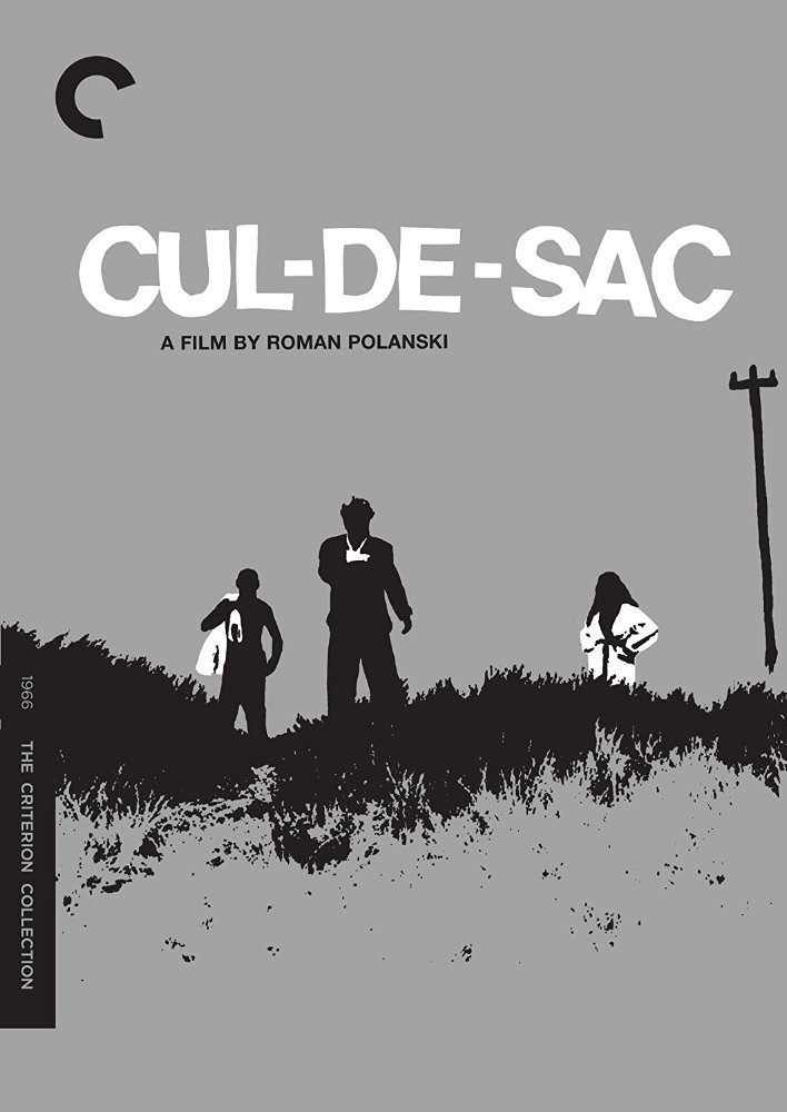 Download Cul-De-Sac 1966 1080p BRRip x264 - WeTv Torrent