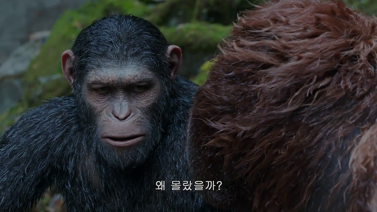 War for the Planet of the Apes (2017) 720p HDRip x264 [Dual Audio] [Hindi+English]