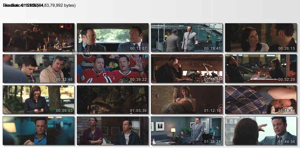 The Dilemma (2011) 720p BluRay x264 Esub [Dual Audio] [Hindi+English] - GOPISAHI