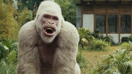 Rampage Movie 2018 720/1080p Direct Download For Free