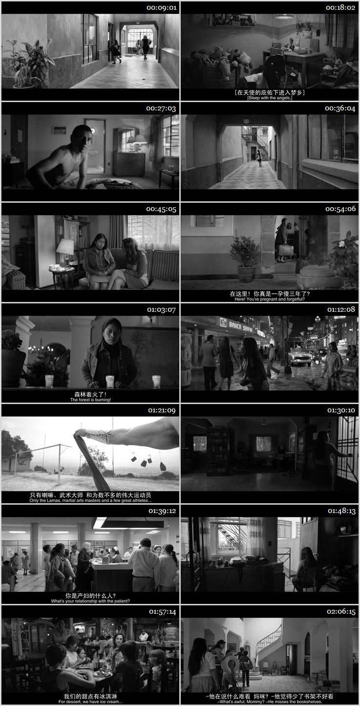2018年高分获奖剧情《罗马》BD中英双字幕