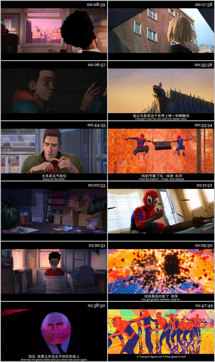 蜘蛛侠:平行宇宙下载全集高清_迅雷下载_免费下载_下载地址 – 迅雷铺