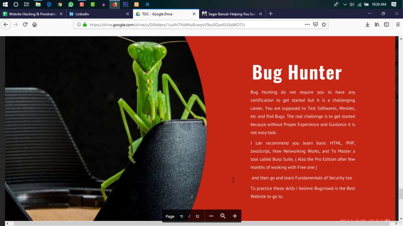 Burp Suite Test Website