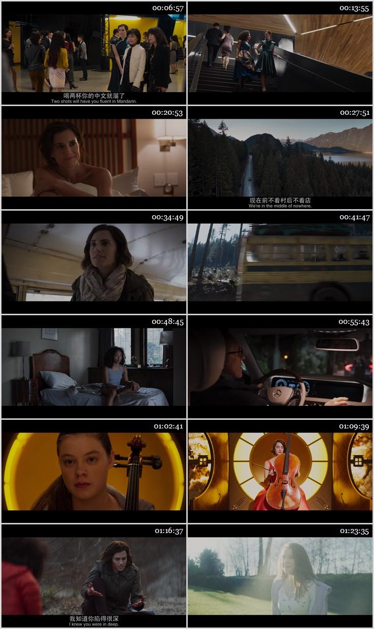 2019美國驚悚恐怖電影《完美琴仇》中英雙字高清下載