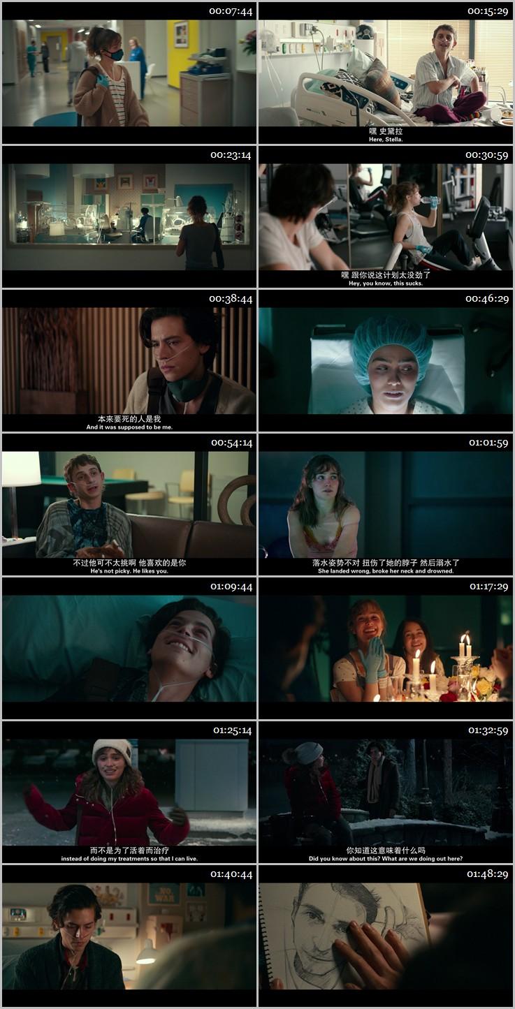 2019年高分剧情爱情《五尺天涯》BD中英双字幕
