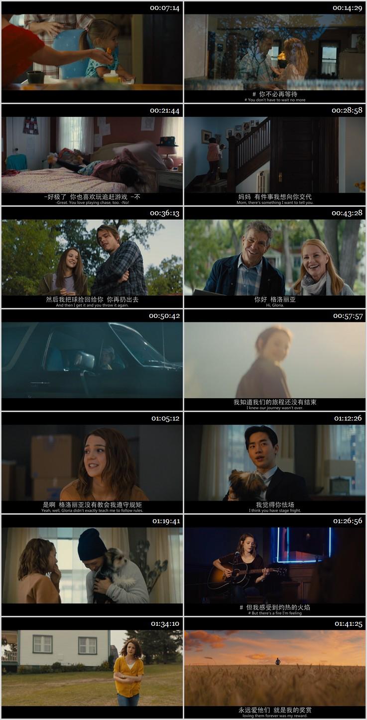 2019年喜剧《一条狗的使命2》BD中英双字幕