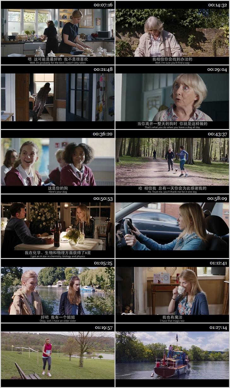 2018年喜剧《我的冤家是条狗》BD国英双语双字