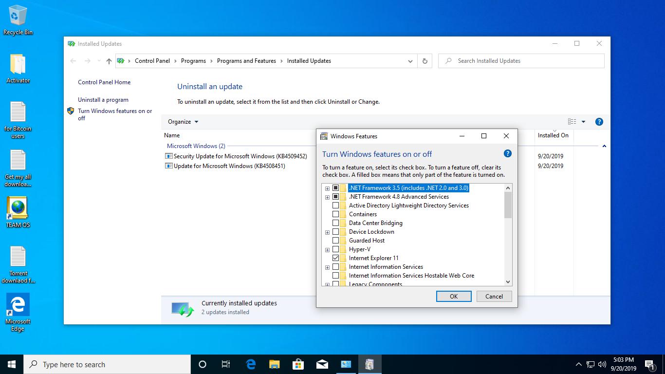 Windows 10 Pro 19h1 v.1903.18362.356 En-us x86 Sept2019 ...