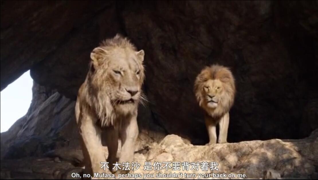 狮子王真人版迅雷下载
